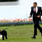 Obama y Bo