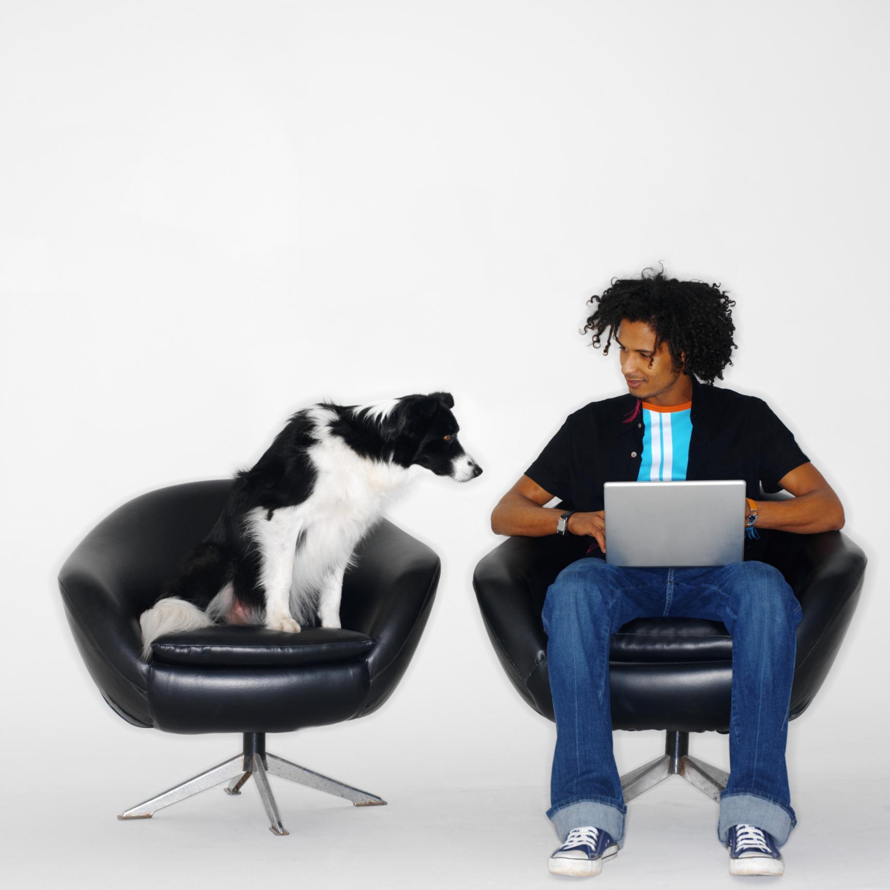 trae tu perro al trabajo