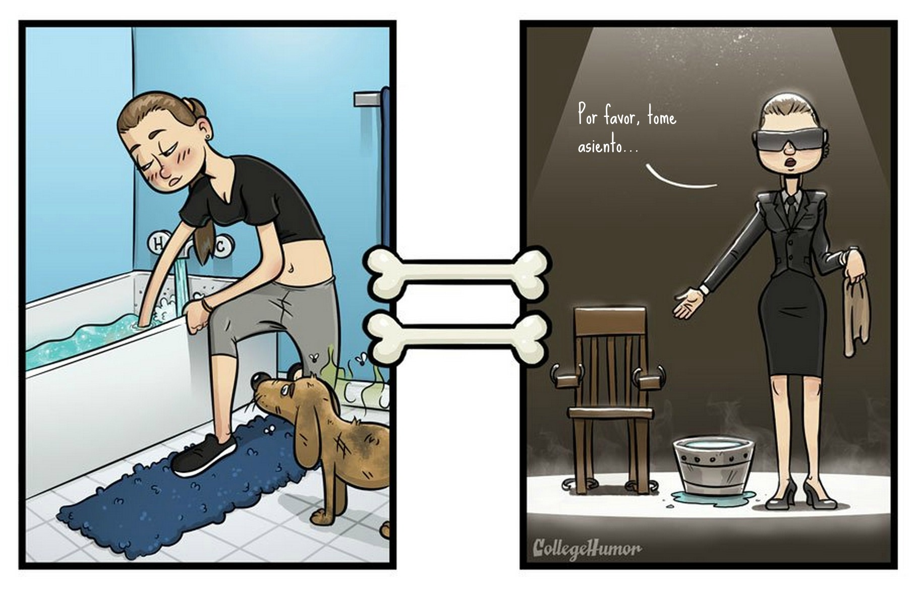 perro_baño