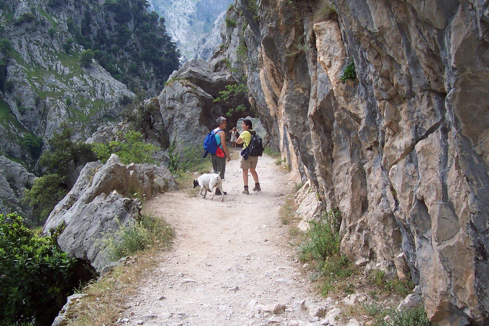 Fuente de la imagen: Almonteconmiperro.blogspot.com