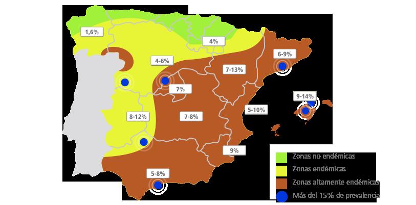 espana copia