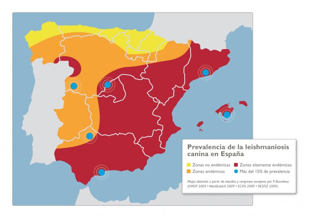mapa-endemico-leishmaniosis-1024x724