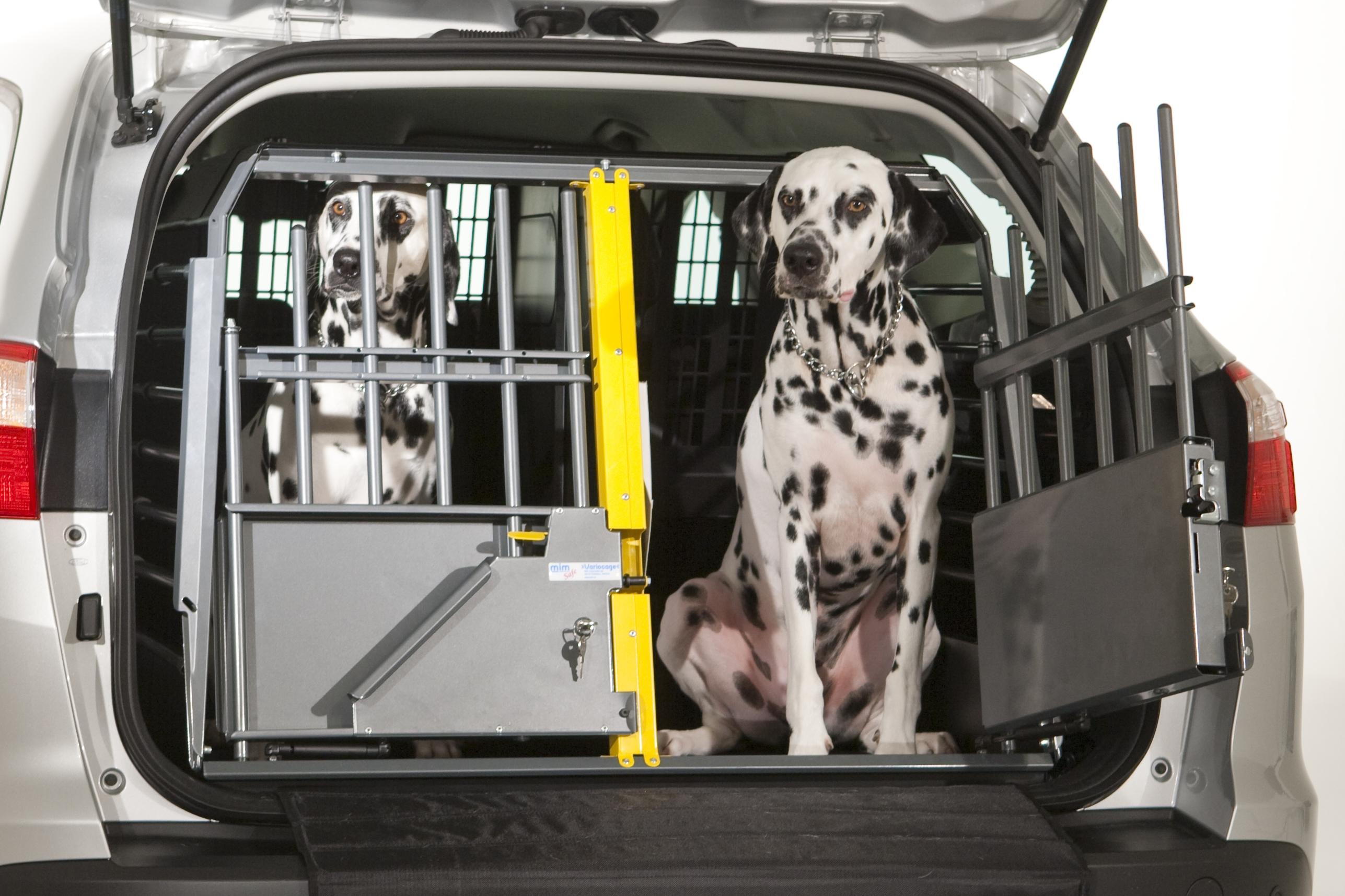 reja-separadora-coche-perro