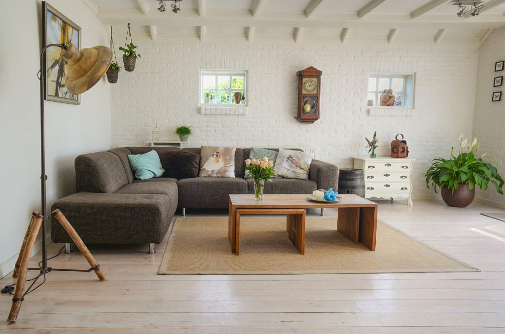 allergie chien meubles tapis rideaux