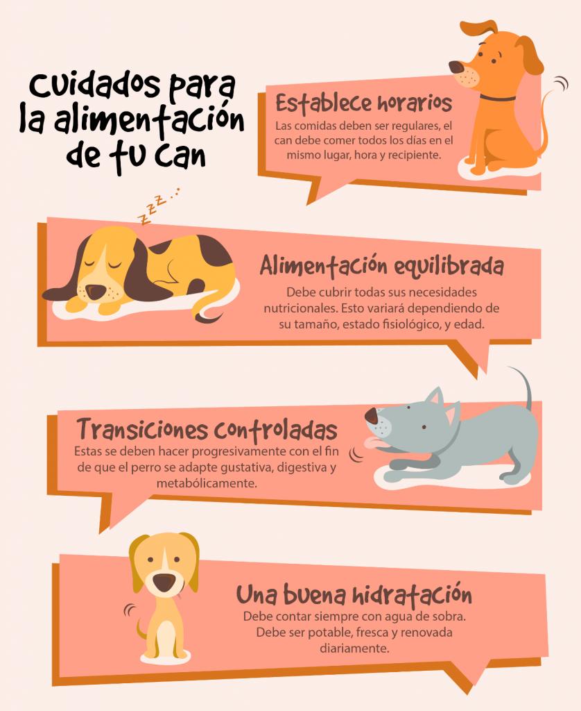 Info animalear alimentacion