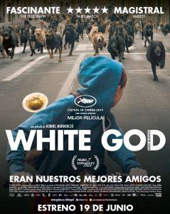 películas white god
