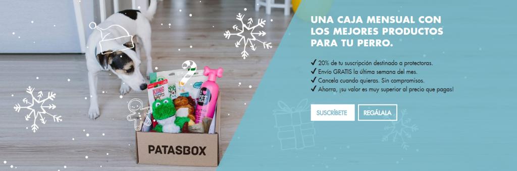 regalos perro patasbox