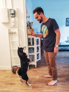 Thomas cuidador de perros gudog