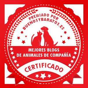 mejor blog animales de compañía