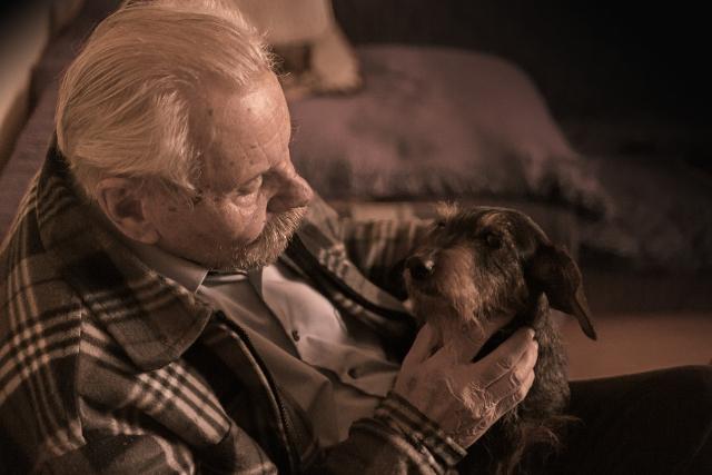 Tener un perro ayuda a nuestros mayores